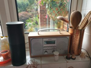 Standard Alexa Echo smart device